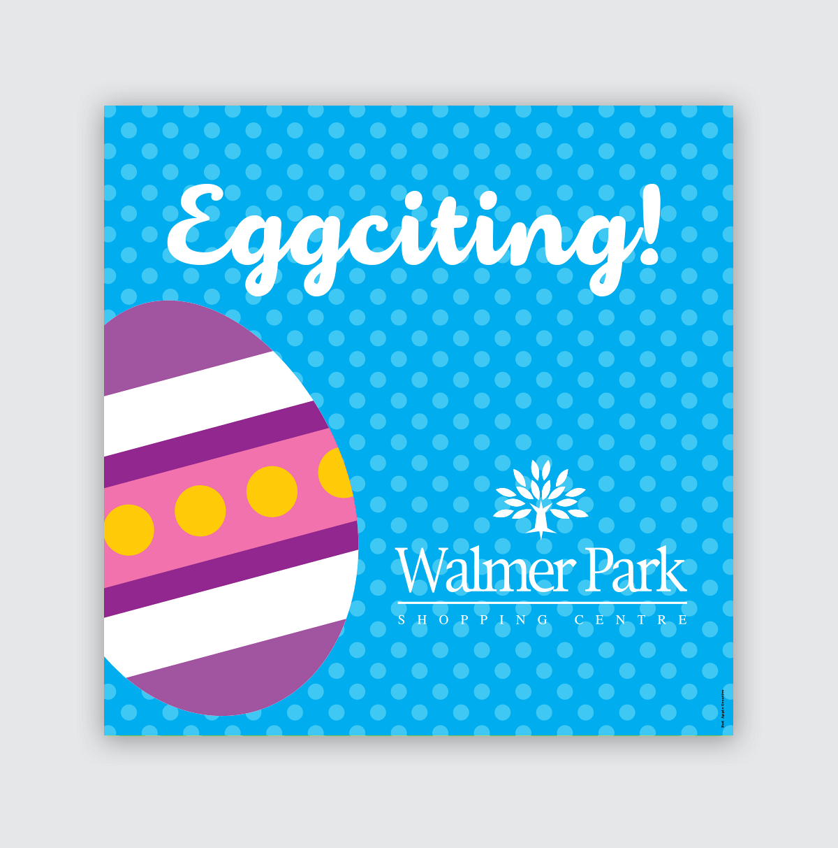 Walmer-Park-Page-Icon-Easter-Corex-Board-Blue-9